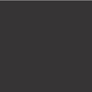 CEVADA PURA AMERICAN SOUR